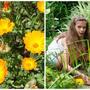 Растения – пищевые ароматизаторы